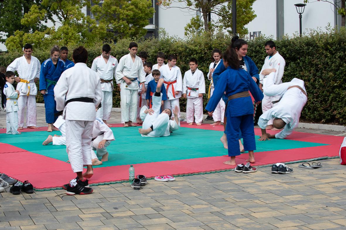 Il karate di OPES sarà presente a Roma Sport Experience con stage, esami e corsi di aggiornamento
